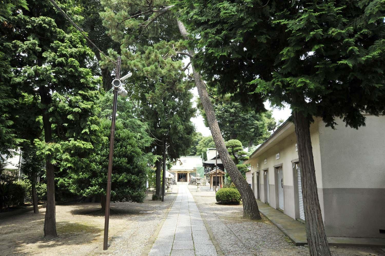 一直線に伸びる約100mの参道。正面に立つ社殿は明治百年記念事業として、昭和43年(1968)に改築竣工したもの。