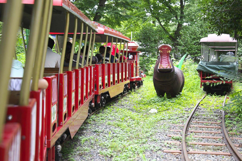和41年(1966)に導入された模型列車はアメリカ製。この頃、サイクロンやミステリーゾーンや、アンチックカーなどが設置されほぼ現役だ。列車はゆっくりあじさい園の中を走る。時折大きな動物の模型がいる。