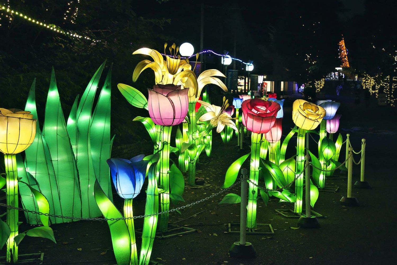 夜の巨大花 出入口から石神井川を渡ってアトラクションに至る道筋には、怪しく輝く巨大花の数々。夢の世界から現世へ。帰りたくない。