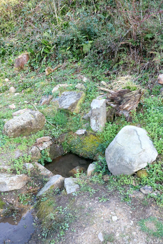 山吹井戸。石の隙間から水があふれていた。