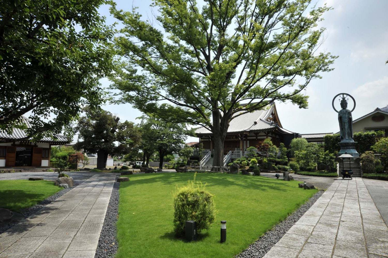 ケヤキの大樹を囲むように本堂、観音堂、大観音などが整然と立つ。