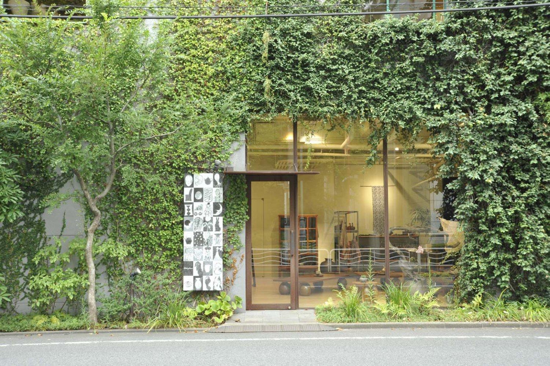 2つの元倉庫をつなげてリノベーション。コンクリートの壁に緑が映える。