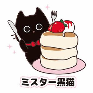 ミスター黒猫