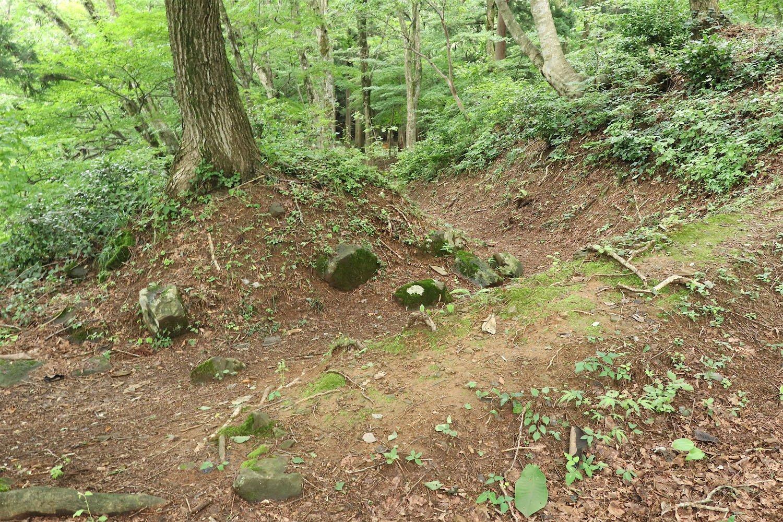 虎口の上部には崩壊した石垣の石が転がっていた。