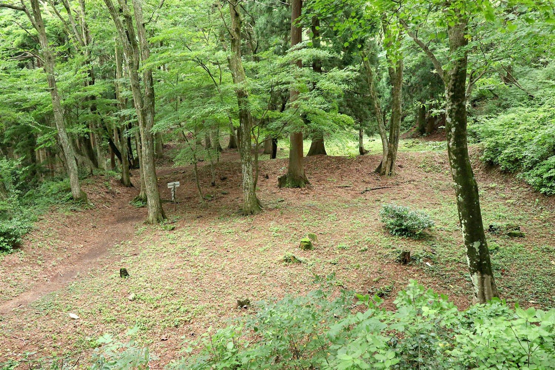 手前が観音屋敷跡。奥の地面に緑が多い部分が千畳屋敷跡。