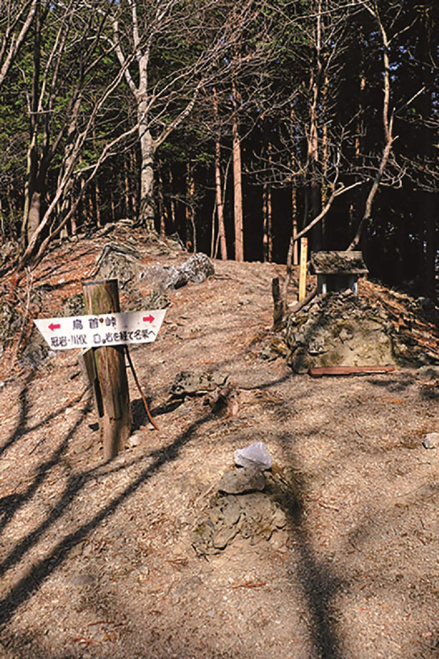 かつて白岩と冠岩(かむりいわ)を結んだ道に鳥首峠があった。標識も残っていたが、今はどちらの集落も廃村になった。