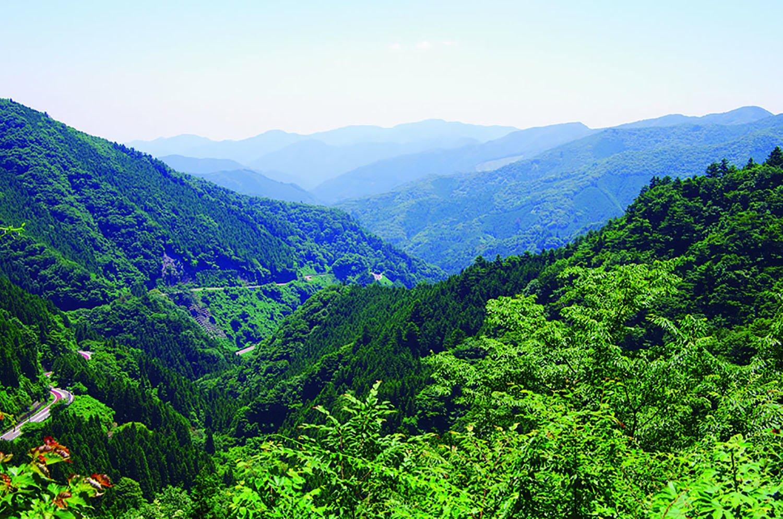 「森林館」から三頭大滝へ行く途中に展望が開ける場所がある。正面に生藤山など。左の道は奥多摩周遊道路。
