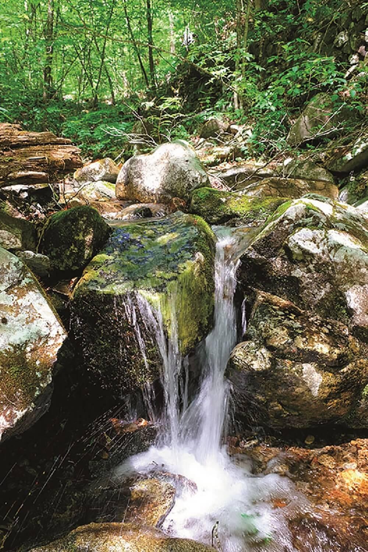 三頭大滝上流部の三頭沢。三頭山を源流部として秋川となり、多摩川へ注ぐ。