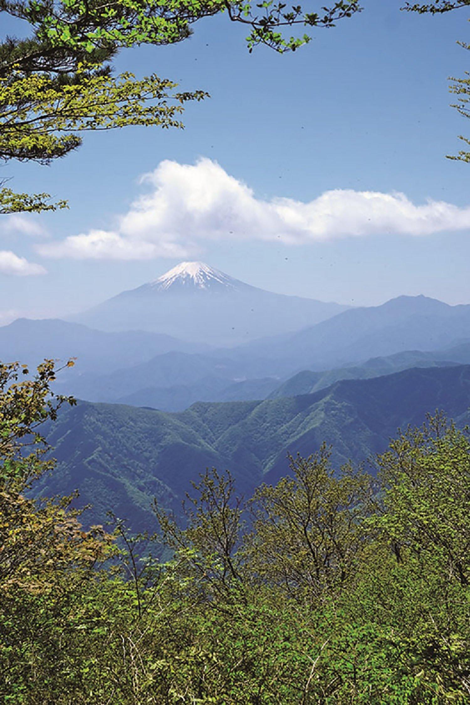 三頭山の西峰から見た富士山。三頭山には3カ所の山頂があるが、この西峰の展望がいい。