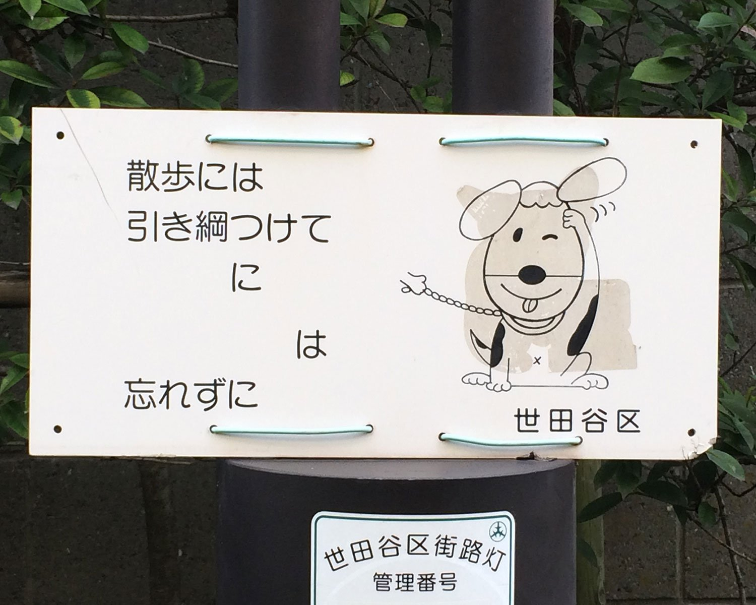 Dog owners exam 《飼い主検定》