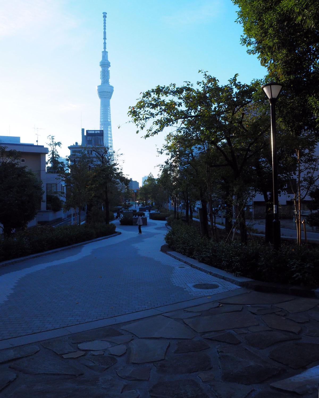 旧日光街道との交差地点から隅田川の方角を望むと、ちょうどスカイツリーが見える。