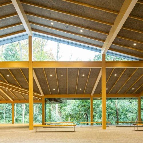 【明治神宮 鎮座100年】森に新設された『明治神宮ミュージアム』〜設計は隈研吾。境内の木々も再利用〜