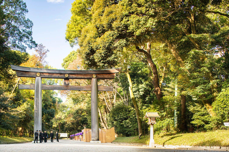 正参道入り口に立つ日本一の大鳥居。朱色などに塗らない素木(しらき)の荘厳な鳥居だ。写真を撮る人も多い。