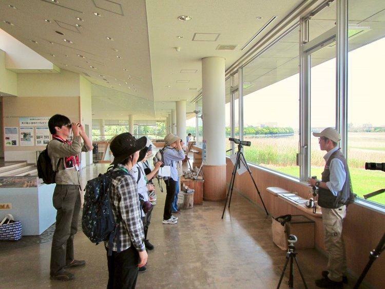 習志野市谷津干潟自然観察センター(ならしのやつひがたしぜんかんさつせんたー)
