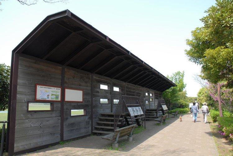 谷津干潟公園(やつひがたこうえん)