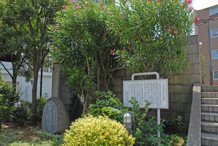 太宰治の植えた夾竹桃(だざいおさむのうえたきょうちくとう)