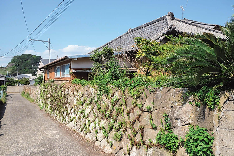 太海の家。沖縄のような風景だ。