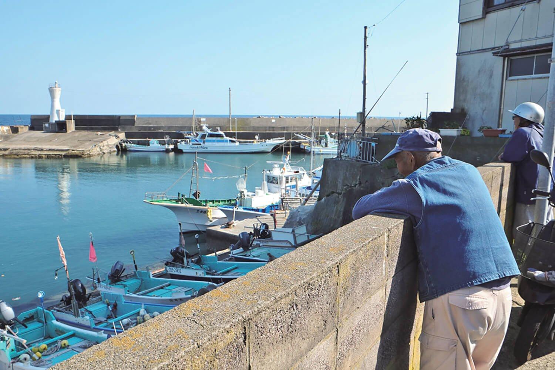 漁港を眺めている御高齢の漁師。夕方の出航前の、のんびりした時間を過ごしている。