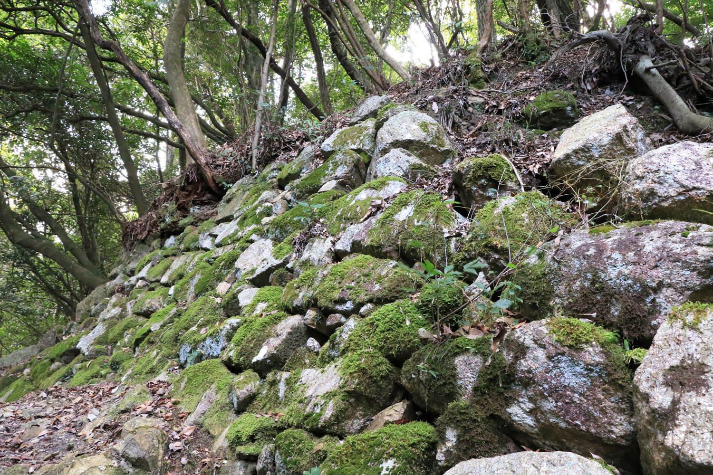 苔むす本丸石垣。