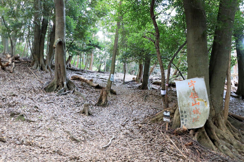 神社脇の山道入口。なんだか不安を煽られる看板……。