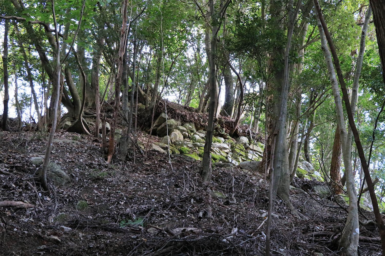 本丸東側面の石垣。
