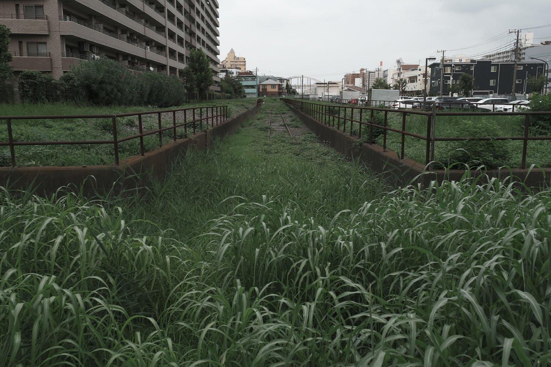 越中島の都有地に残る線路。両サイドのホームらしき部分の上にも線路が敷かれていた。