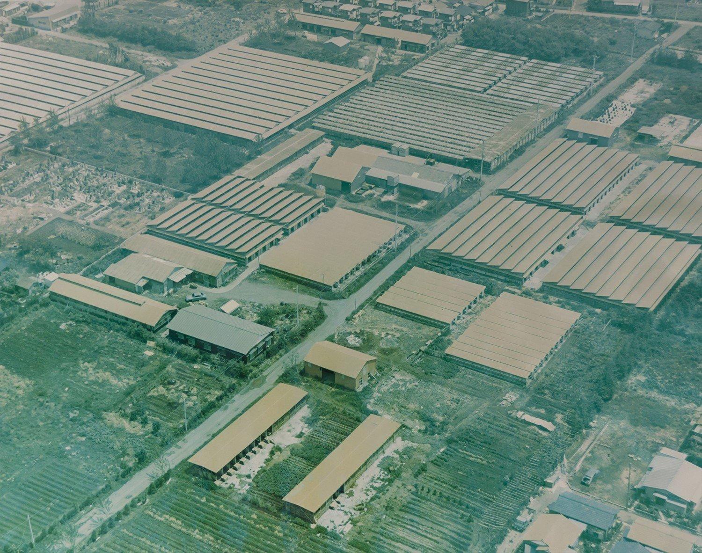 1972年の小川フェニックス周辺の風景。今よりも圧倒的に鶏舎が多いのがわかる。