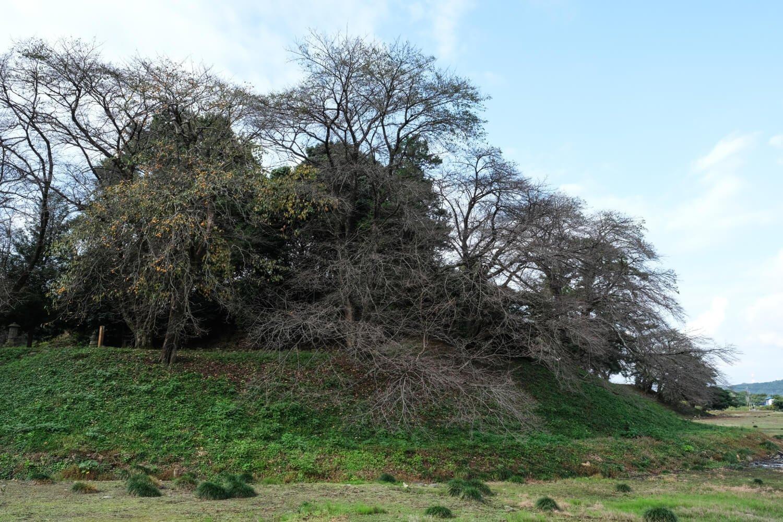 東日本では最大級の横穴式石室を持つ前方後円墳の七輿山古墳(国指定史跡)。