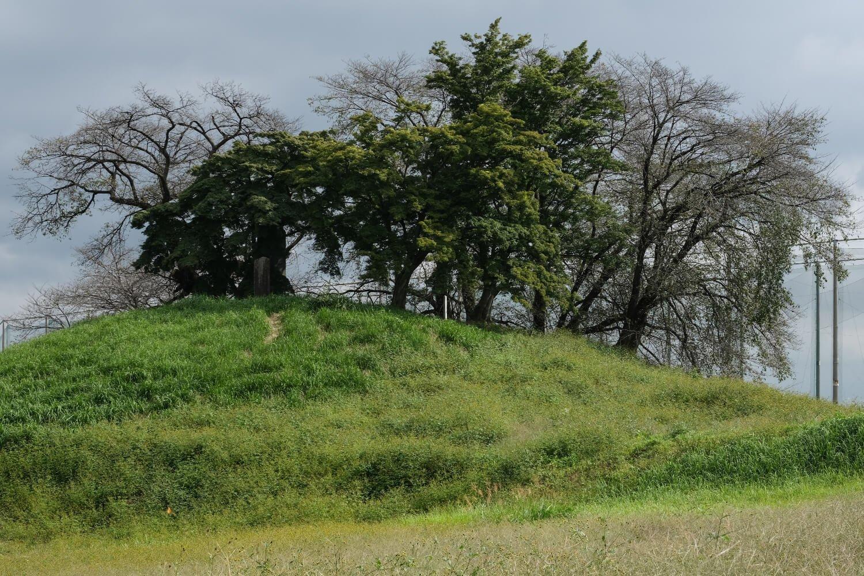 猿田川が生んだ河岸段丘の傾斜を巧みに活かした全長155mの前方後円墳・白石稲荷山古墳(国指定史跡)。