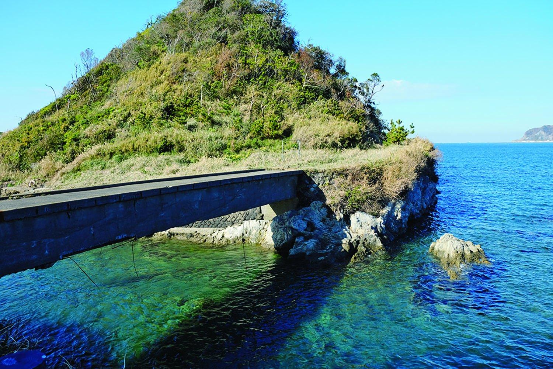 昭和30年代、アコヤガイを養殖して真珠を採っていたという真珠島。