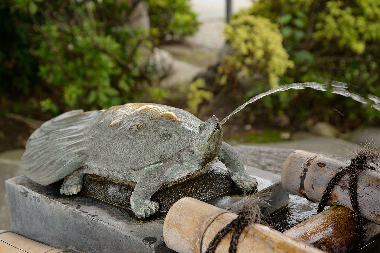 手水舎では不動の亀がお迎え。