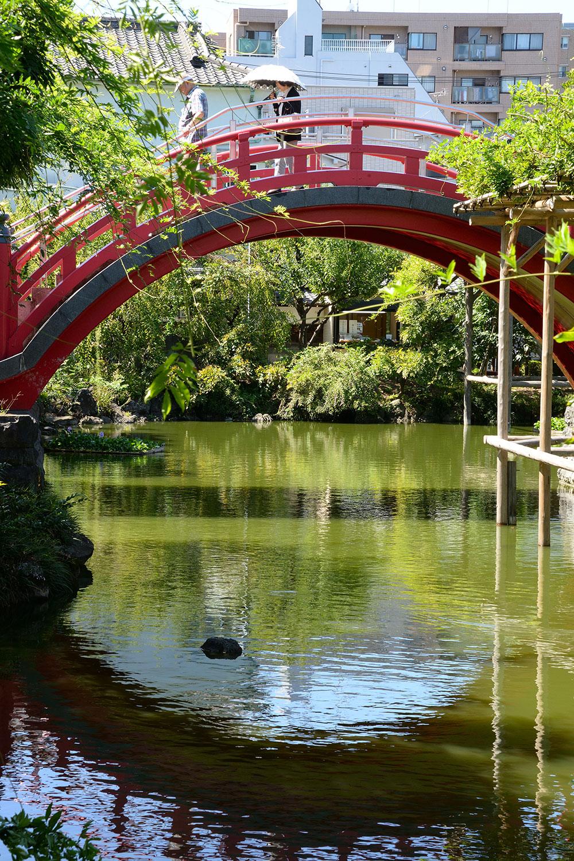 見る角度によって豊かに表情を変える太鼓橋。この橋の前で深川の辰巳芸者が羽織を脱ぎ、お太鼓結びの華やかな帯姿を披露したことから、太鼓橋の名が生まれたという説も。