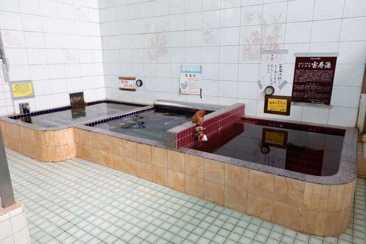 湊町 松の湯(みなとまち まつのゆ)