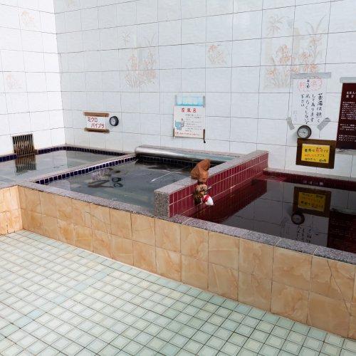 コインランドリーの奥に潜む昭和の玉手箱・船橋『湊町 松の湯』でひとっ風呂