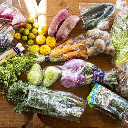 『スナフキッチン』マスター直伝! 「小金井 江戸の農家みち」で買った野菜を家で楽しむ方法【レシピあり】