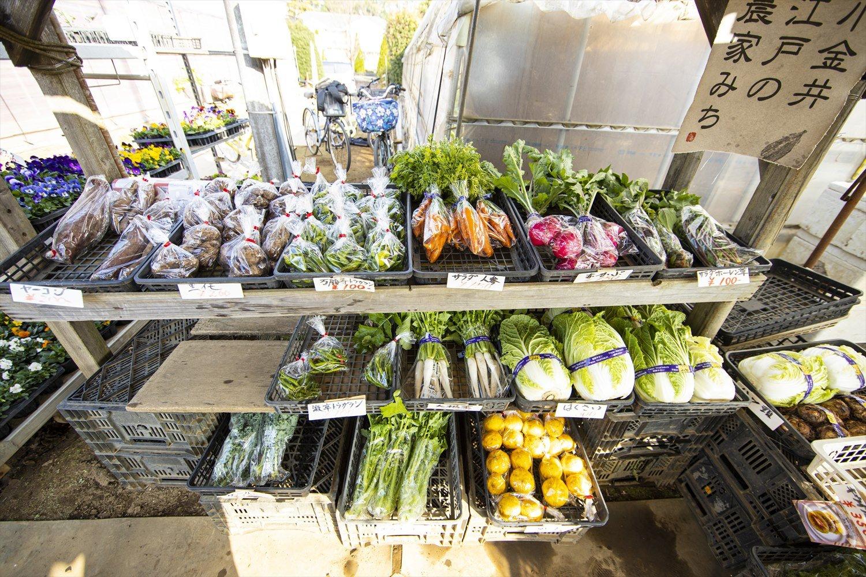 1500坪の農地に60種類以上を栽培。そのほとんどを直売所で売り切る、活気ある農園。キウイやブルーベリーなどのフルーツ系も豊富にそろう。野菜作りや収穫体験ができる貸し農園サービスも行っている。