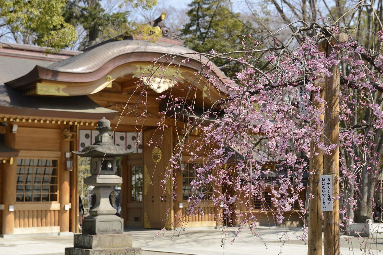 平成23年に改築された随神門。