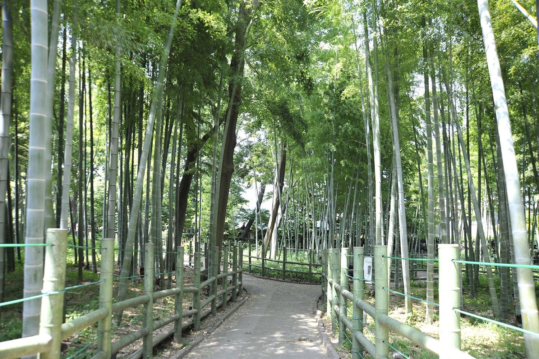 02_すずめのお宿緑地公園