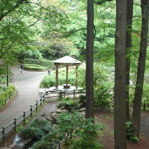 学芸大学駅からはじめる学芸大学・目黒さんぽ〜住宅地に点在する緑の公園と名刹を巡るさんぽコース〜