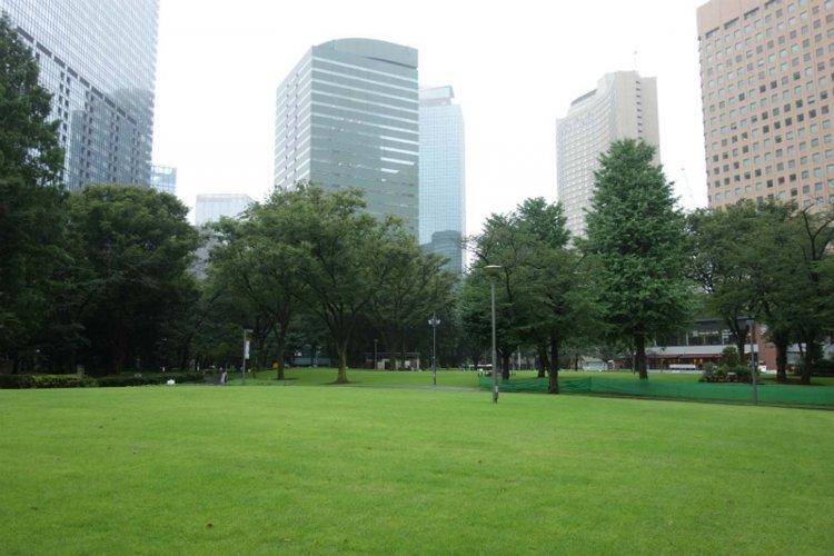 新宿中央公園(しんじゅくちゅうおうこうえん)