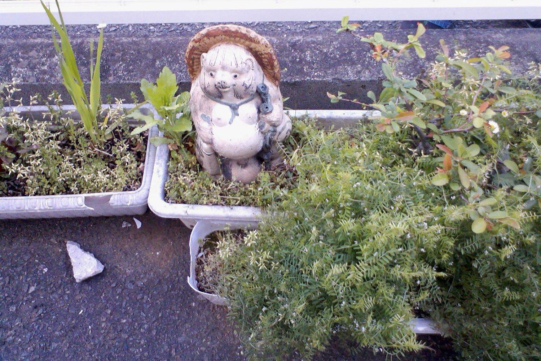 最初に村田さんが気になったプランター。たしかに狸の目が死んでいる。写真提供:村田さん