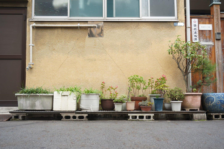 「路肩の前にブロックを敷いて、そこに板を渡しています。こうすると照り返しで鉢が熱くならない効果もあるんです」と村田さん。