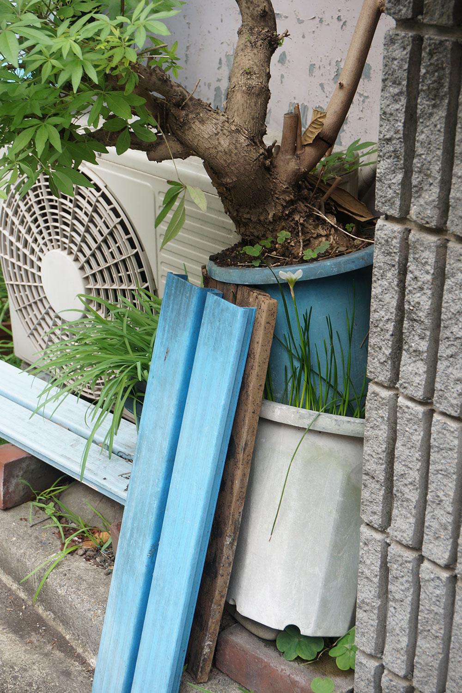鉢の上に鉢が置かれた状態。これが村田さんが「鉢オン鉢」と呼ぶ状態だ。