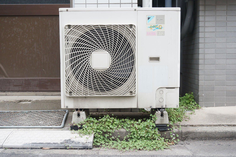 室外機の下に生えているのはツタバウンランという植物だそう。