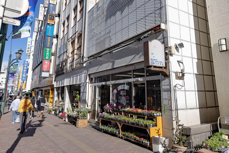 大通りに面したにぎやかな場所にお店を発見。
