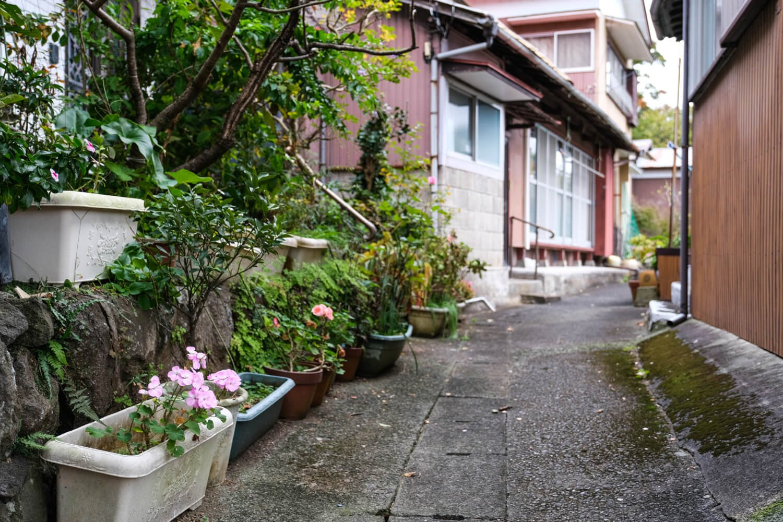 道端に置かれたプランターを通して季節の花に出合えるのも背戸道ならではの風情だ。