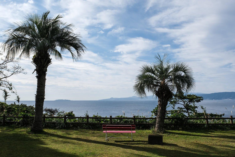 温暖な気候も相まって、公園内には南国風情が漂っている。