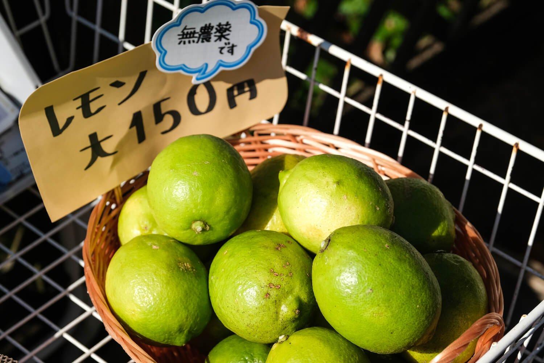 受付脇では無農薬で育てたレモンやライムも販売中。