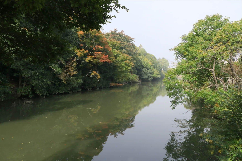亀山城北側の水堀。絵図と見比べてみて欲しい。