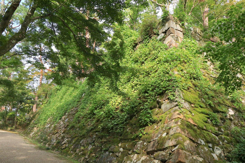 高さ4〜5mはある天守石垣。